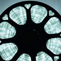 Гирлянда Шланг Дюралайт Белый 2-х жильный, 10000 см, прозрачный провод, переходник (1-159)