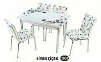 Комплект обеденной мебели SIYAH CICEK 1004