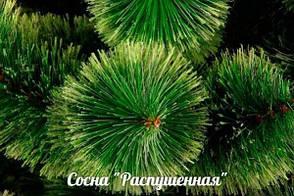 Искусственный новогодний декор, еловая гирлянда Пушистая зеленая 250 см, фото 2