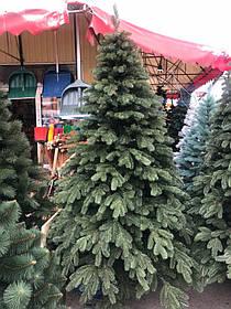 Ялинка Лита Роял 2.3 м зелена