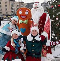 Новогодние поздравления Деда Мороза и Снегурочки, фото 1