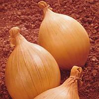 Семена лука Гигант