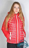 Куртка молодіжна в смужку