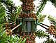 Сосна 185 см з інеєм, Forest, фото 7