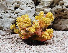 Штучний корал Trixie 12см