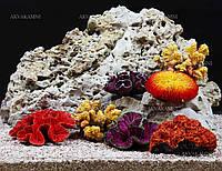 Набор кораллов для дизайна аквариума Trixie, фото 1