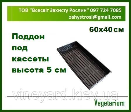 Поддон 60х40 см под кассеты для рассады 40, 77, 96, 126, 160, 260 ячеек Глубина 3; 5 и 7 см ВЕГЕТАРИУМ