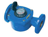 Счетчик холодной воды фланцевый Ду100 Powogaz JS IMPERO, фото 2