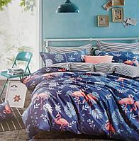 Комплект постельного белья, материал хлопок, Размер 2-х спальный