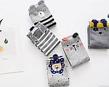 Шкарпетки жіночі, фото 2