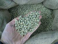 Кофе зеленый в зернах Гондурас Марагоджип (ОРИГИНАЛ), арабика Gardman (Гардман)