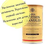 Solgar, Лецитин в гранулах, Soya Lecithin Granules 16 унций (454 г)