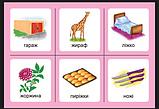Українська мова. 1 клас. Дидактичні картки. Асоціації : у 3 ч. : комплект 2 : звуки [ж]-[ш], [ш]-[ш], [ж]-[ж], [ч]-[ч]., фото 2