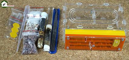 "Полный комплект: муравьиная ферма ""New таун"" + муравьи messor structor (жнец) , корм и аксессуары."