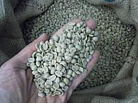 Кофе зеленый в зернах Панама Букете (ОРИГИНАЛ), арабика Gardman (Гардман), фото 1