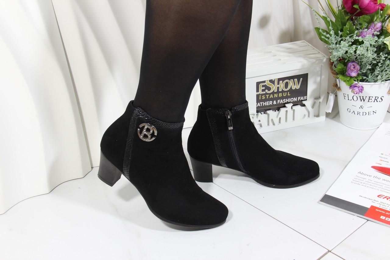 Замшеві черевики Battine B471