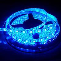 Светодиодная лента LED 5050 Синяя 100m  (S00086)