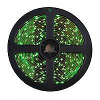 Светодиодная лента  LED 5050 Зеленая  (S00150)