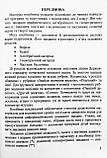 НУШ Математика. Збірник завдань. 2 клас. (ПіП), фото 3
