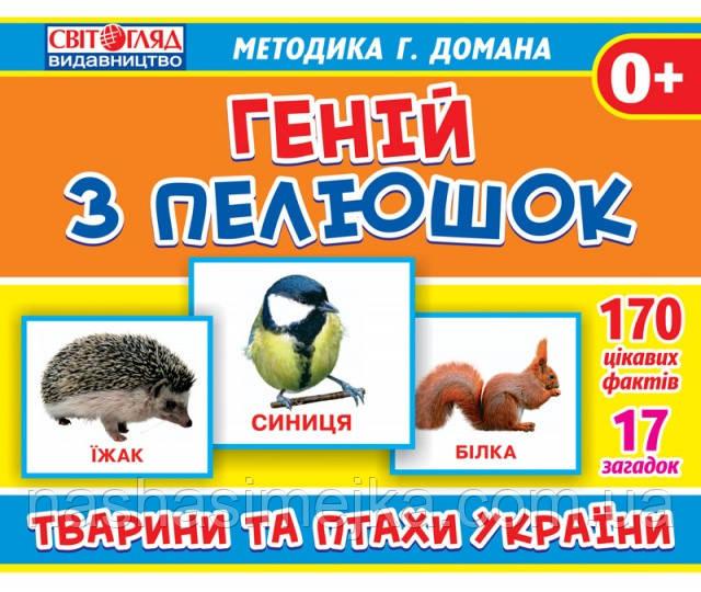 1020-2. Геній з пелюшок. «Тварини та птахи України»