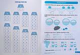 Практикум (НУШ) 1 клас. Склад числа 2-10. (Торсінг), фото 2