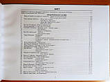 Модернізовані таблиці з української літератури. ЗНО 2020. Шпільчак Марія. (Симфонія Форте), фото 4