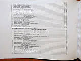 Модернізовані таблиці з української літератури. ЗНО 2020. Шпільчак Марія. (Симфонія Форте), фото 5