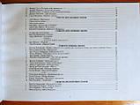 Модернізовані таблиці з української літератури. ЗНО 2020. Шпільчак Марія. (Симфонія Форте), фото 6