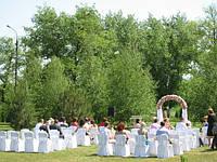 Свадебное оформление в розовом цвете (Наши работы)