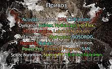 Поступление: Activlab, BioTech, BSN, Cobra Labs, Dymatize, FitMax, Hydra Cup, IronFlex, Kevin Levrone, Labrada Nutrition, MEX Nutrition, MyProtein, NOSOROG, Nutrend, Nutrex, Optimum Nutrition, Power Pro, Powerful Progress, SAN, Scitec Nutrition, Strong FIT, Ultimate Nutrition.