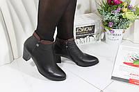 Ботинки на среднем каблуке Sanborina 0431, фото 1