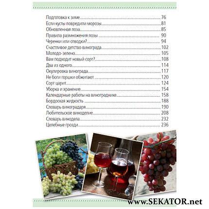 """Посібник """"Виноград і виноробство"""", фото 2"""