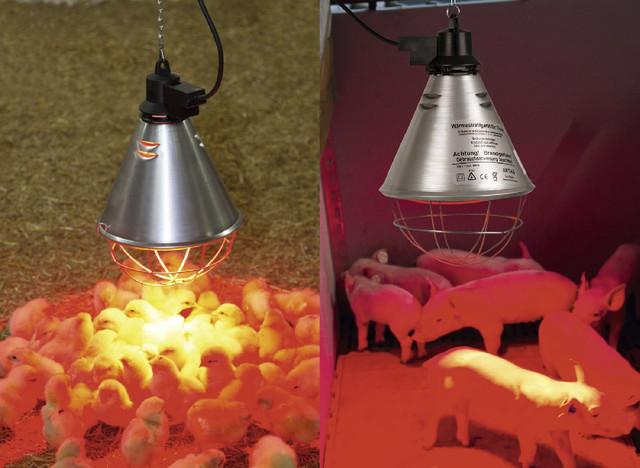 Защитный брудер для инфракрасной лампы Е27 с переключателем