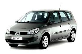 Автозапчасти Renault Scenic 2 (2003-2009)