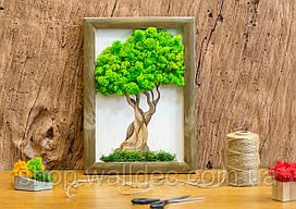 Картина декоративная  натуральным мхом, Дерево.