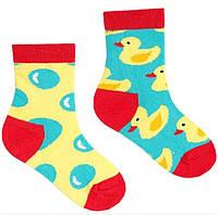 Носки детские Sammy Icon Furphy 2-3 года Цветные