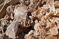 "Мелкий Бут "" Stone Flower"" KLVIV, фото 1"