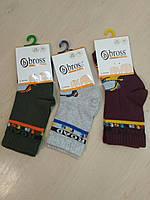 Носки турецкие демисезонные для мальчика Bross , размер 22 - 24