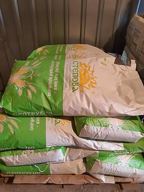 Насіння кукурудзи РАМ 8143, фото 2