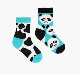 Шкарпетки дитячі Sammy Icon Stains 12-24 місяців Кольорові
