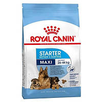Сухой корм Royal Canin Maxi Starter для щенков крупных пород до 2 месяцев, 4 кг