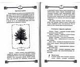 Ворожіння по картах Марії Ленорман, Ян Дикмар, фото 2