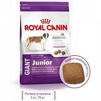 Сухой корм Royal Canin Giant Junior для щенков гигантских пород старше 8 месяцев, 15 кг