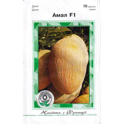 """Насіння дині ранньої """"Амаль"""" F1 (10 насінин) від Clause, фото 2"""