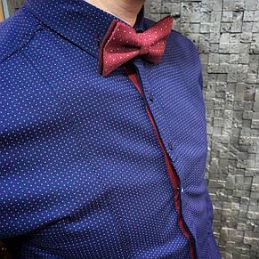 Мужская рубашка I&M Craft темно-синяя в точку (110106), фото 2