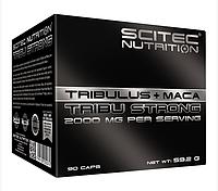 Бустер тестостерона Scitec Nutrition Tribu Strong (90 капс)
