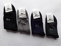 Махрові спортивні шкарпетки Lacoste