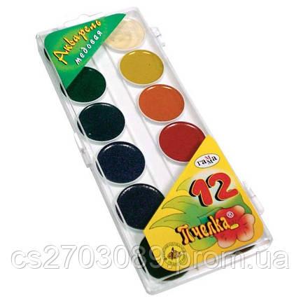Краска акварельная 12цв Колорит без кисточки,пластиковая упаковка,медовая, фото 2