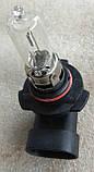 Лампа галогеновая Narva HB3 9005 12v 60w, фото 2