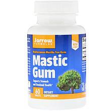 """Мастиковая смола Jarrow Formulas """"Mastic Gum"""" (60 таблеток)"""